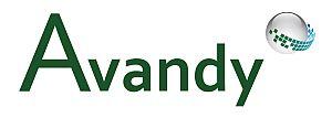 avandy-Logo_300pixi